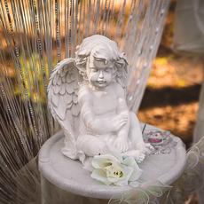 Свадебное оформление от Свадебное агентство Lafler Декор