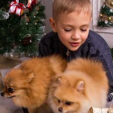 Fotolybov Семейная видеосъемка Видеосъемка