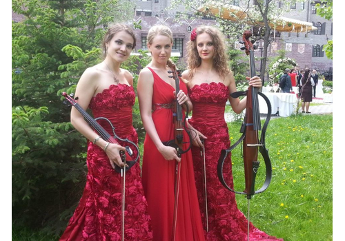Классическое струнное трио Oblivion Артисты по жанрам